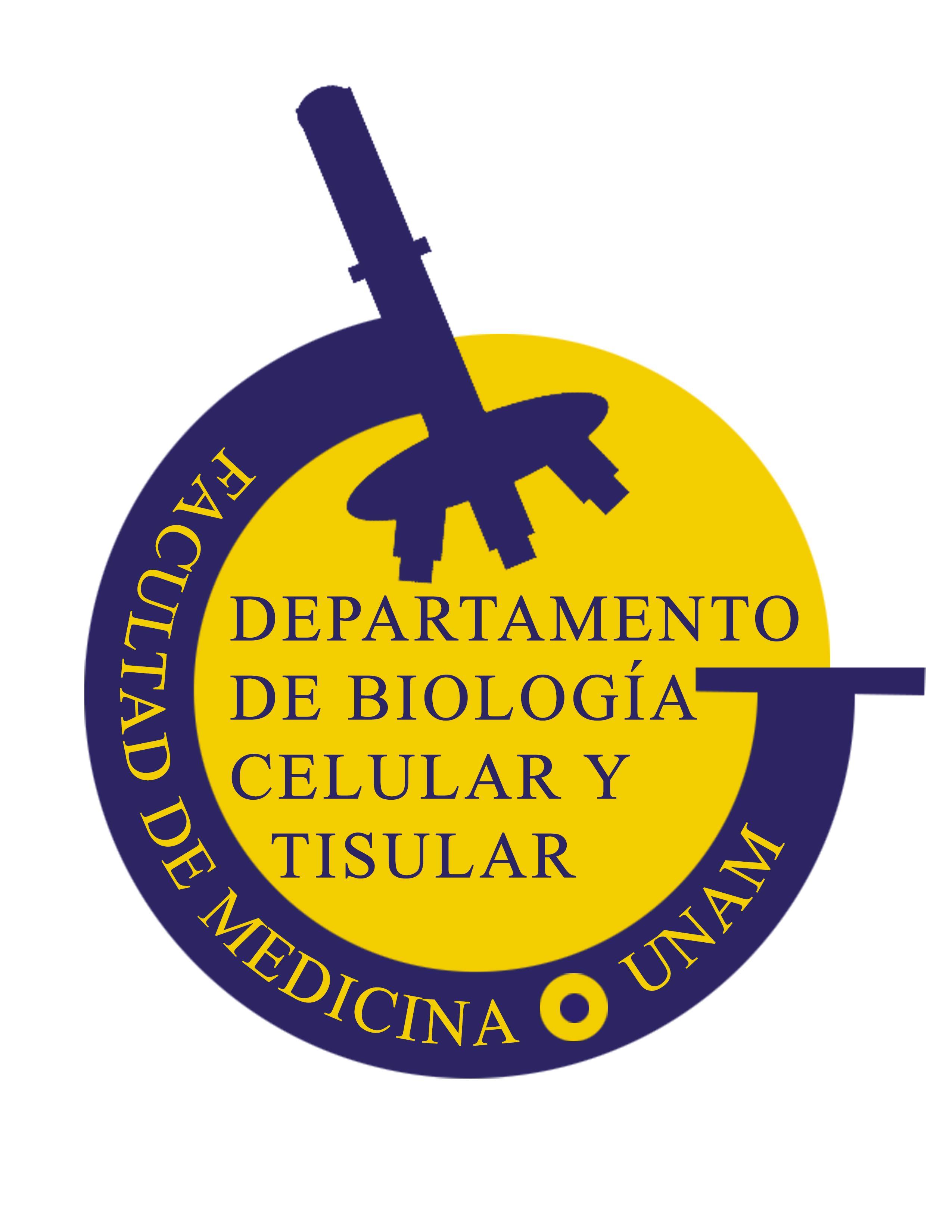 Logo de BCyT