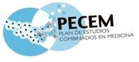Logo PECEM